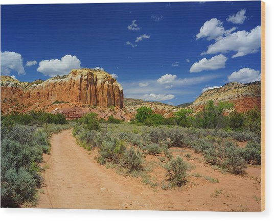 Ghost Ranch Box Canyon Trail Vista   Wood Print