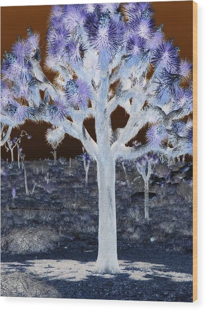 Ghostly Joshua Tree Wood Print by Claire Plowman