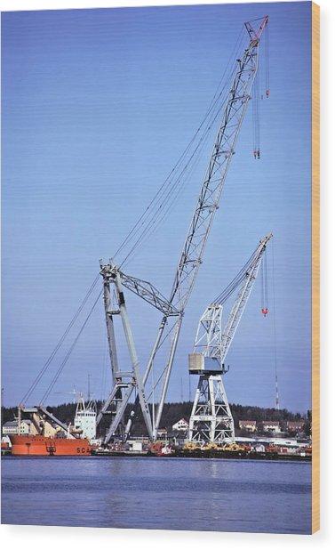 Giant Crane Wood Print by Rod Jones