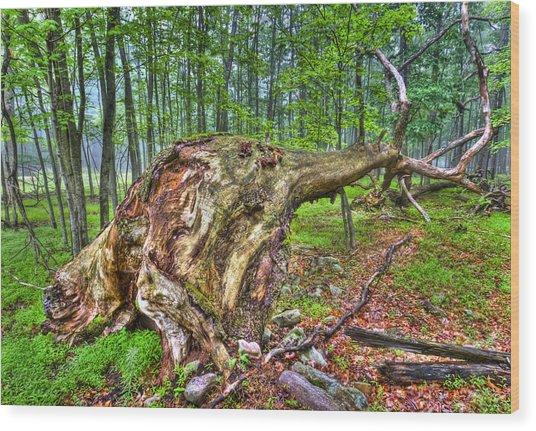 Giant Is Down Wood Print