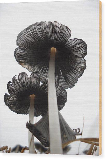 Giant Mushrooms In The Sky Wood Print