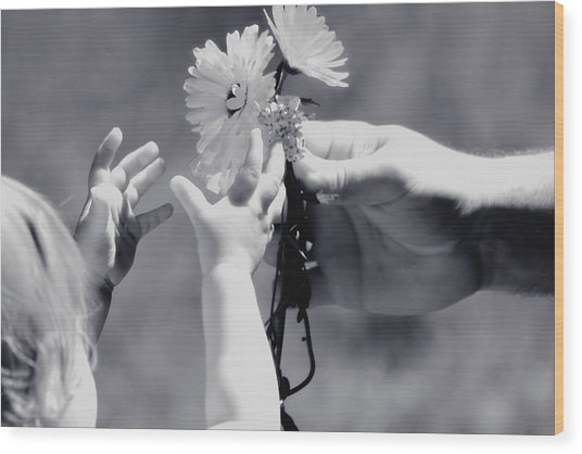 Giving Her Flowers Sweet Baby Hands Wood Print