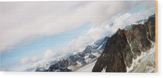 Glacier Flight Wood Print