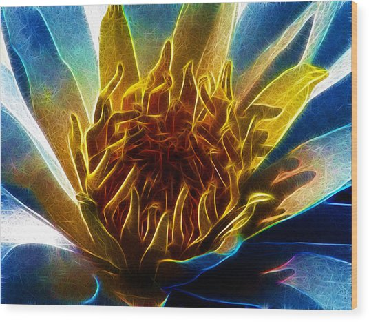 Glowing Lotus Wood Print