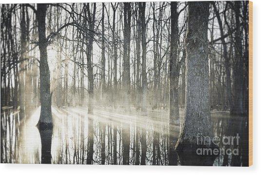 Glowing Woods Wood Print