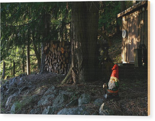 Gnome And The Woodpile Wood Print