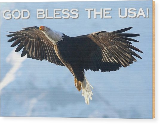God Bless The Usa 2 Wood Print by Carrie OBrien Sibley