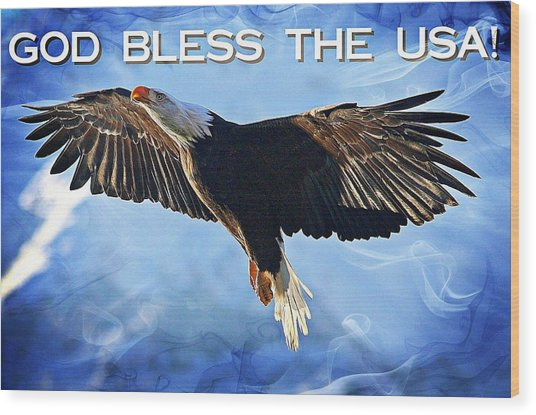 God Bless The Usa Wood Print by Carrie OBrien Sibley