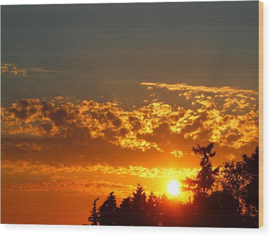 Gold Sunset Wood Print by Jim Moore