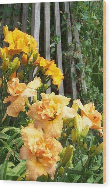Golden Blossoms Wood Print