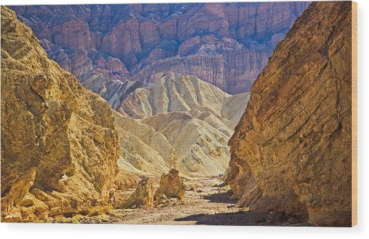 Golden Canyon At Death Valley Wood Print