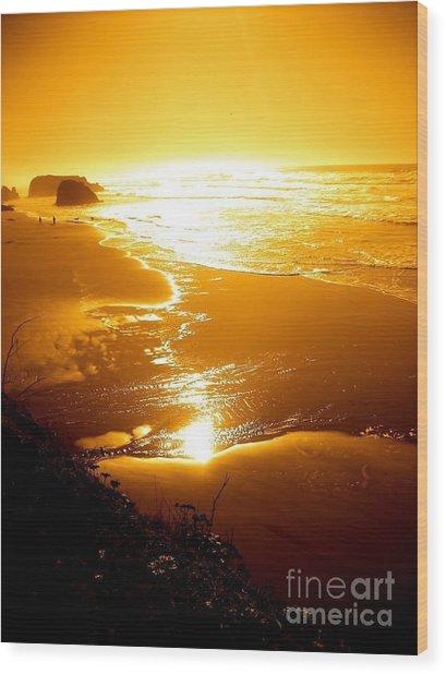 Golden Coast Wood Print by Jeremiah Hutchison