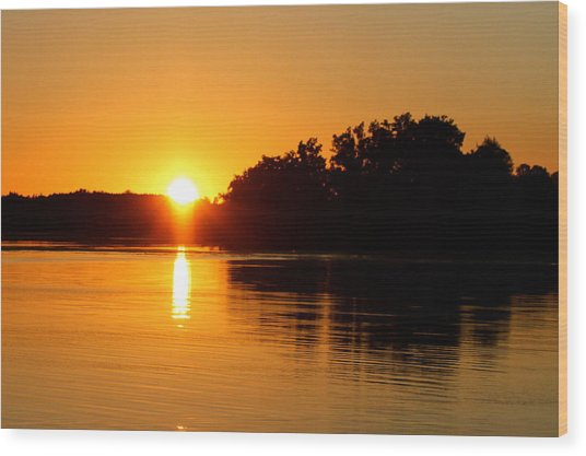 Golden Moment Wood Print by Mike Stouffer
