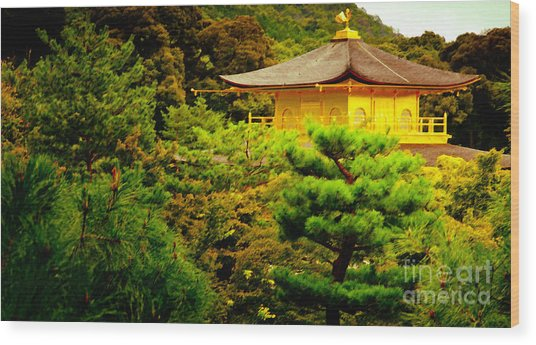 Golden Pavilion Temple In Kyoto Glowing In The Garden Wood Print by Andy Smy