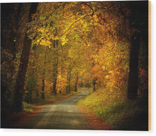 Golden Road Wood Print by Joyce Kimble Smith