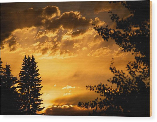 Golden Sky 2 Wood Print