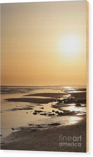 Golden Sunset- California Coast Wood Print