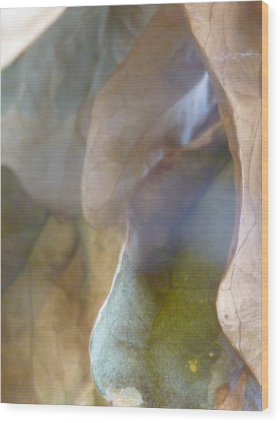Golden Vistas Wood Print