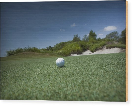 Golf 1 Wood Print by Al Hurley