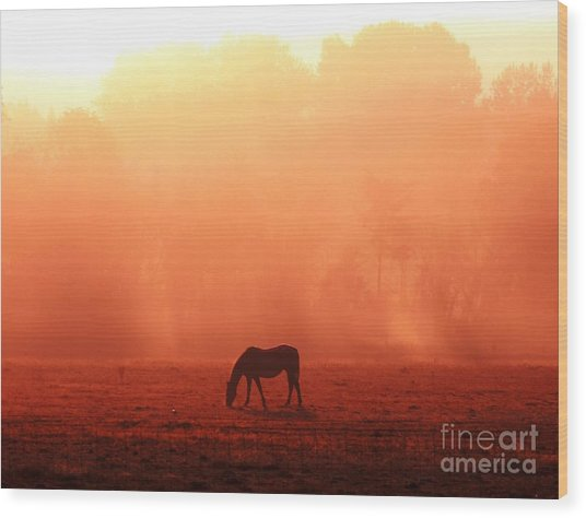 Good Morning Horse Wood Print