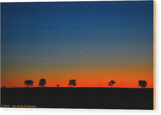 Good Night Moon Wood Print by Dan Crosby