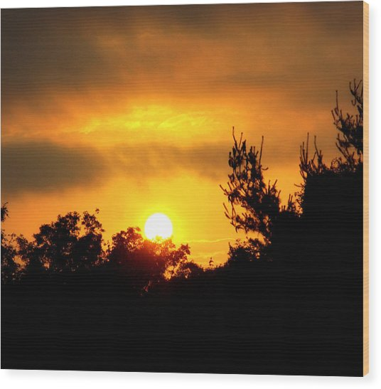 Good Night Mr. Sun Wood Print
