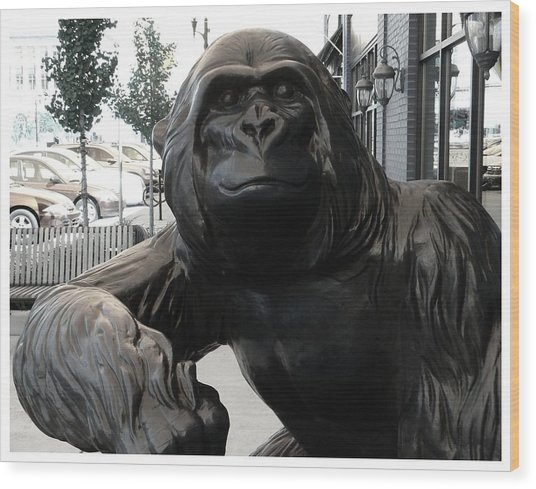 Gorilla On So Bend Street Wood Print