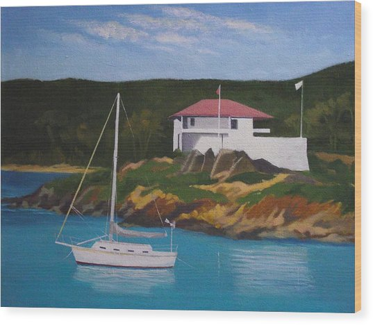 Government House At Cruz Bay Wood Print by Robert Rohrich