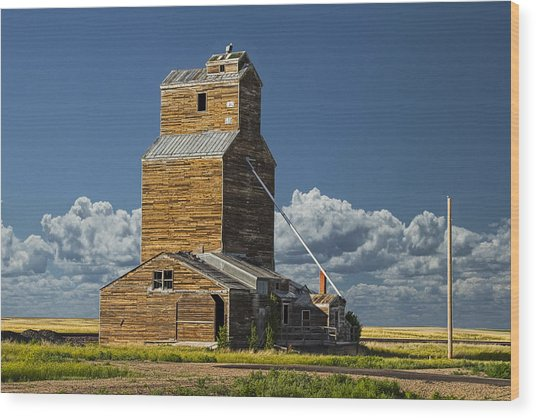 Grainery On The Prarie No.1915 Wood Print