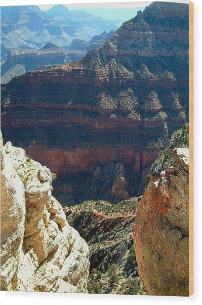 Grand Canyon A Wood Print by Dottie Gillespie