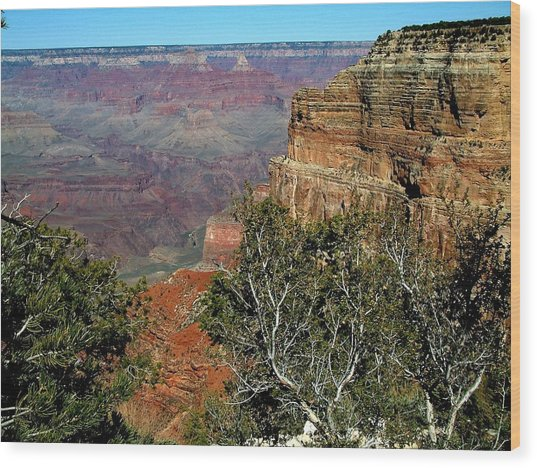 Grand Canyon Aa Wood Print by Dottie Gillespie
