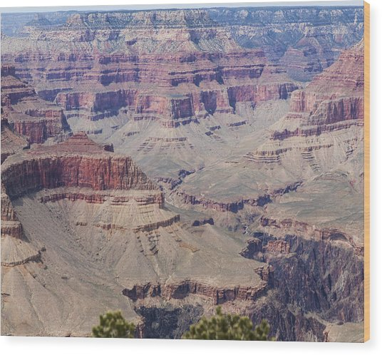Grand Canyon Colorado River Page 7 Of 8 Wood Print