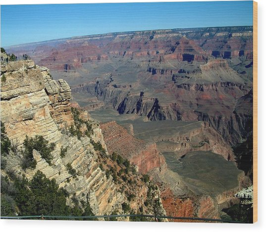 Grand Canyon Wood Print by Dottie Gillespie