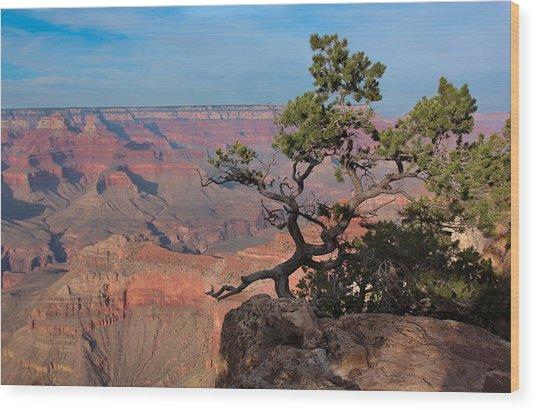 Grand Canyon Wood Print by Olga Vlasenko