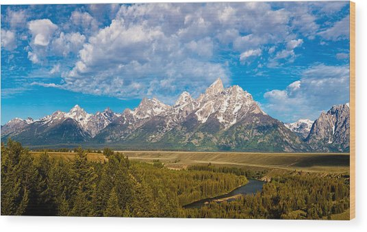 Grand Teton Vista Wood Print