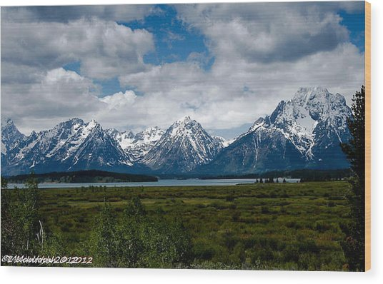 Grand Tetons Wood Print by Lauren MacIntosh