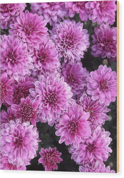 Grape Ice Wood Print by Elizabeth Sullivan
