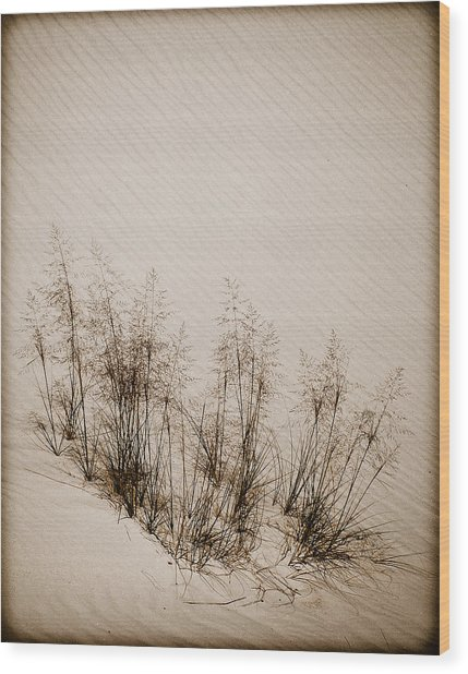 White Sands, New Mexico - Grasses Wood Print