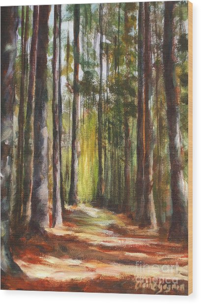 Great Brook Farm Summer Path Wood Print