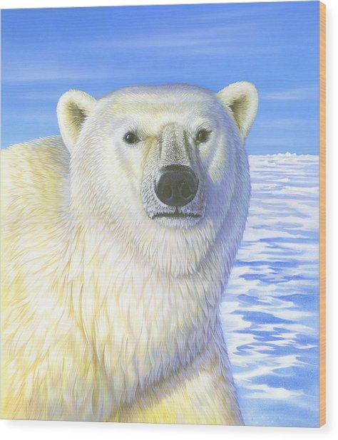 Great Ice Bear Wood Print