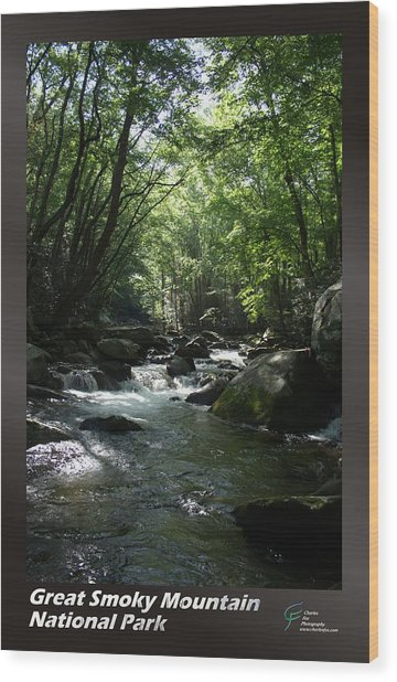Great Smoky Mountains Np 001 Wood Print by Charles Fox