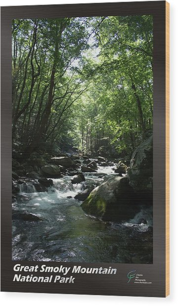 Great Smoky Mountains Np 002 Wood Print by Charles Fox