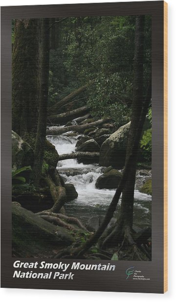 Great Smoky Mountains Np 004 Wood Print by Charles Fox