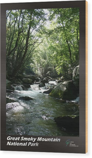 Great Smoky Mountains Np 005 Wood Print by Charles Fox