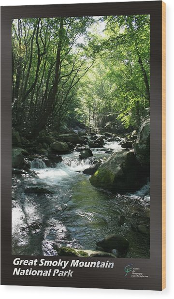 Great Smoky Mountains Np 006 Wood Print by Charles Fox