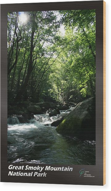 Great Smoky Mountains Np 008 Wood Print by Charles Fox