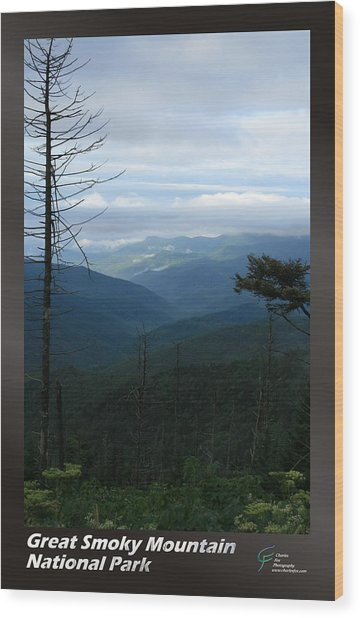 Great Smoky Mountains Np 009 Wood Print by Charles Fox
