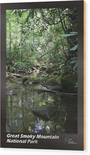 Great Smoky Mountains Np 012 Wood Print by Charles Fox