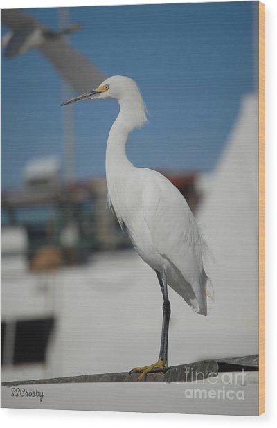 Great White Egret 2 Wood Print