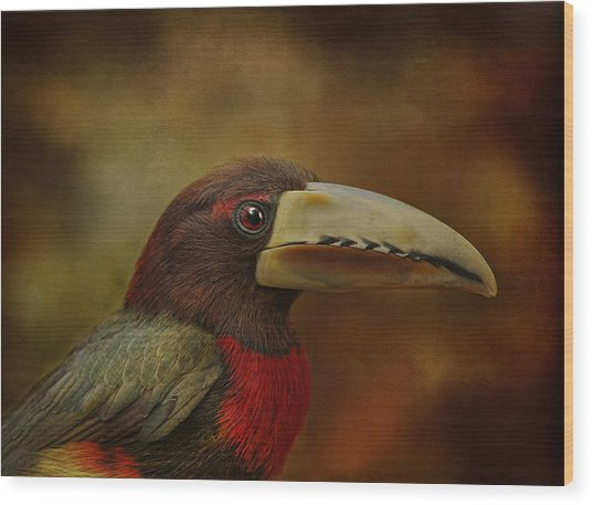 Green Acari Wood Print